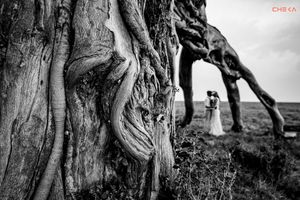 A wedding couple dancing under an old tree in Masai Mara
