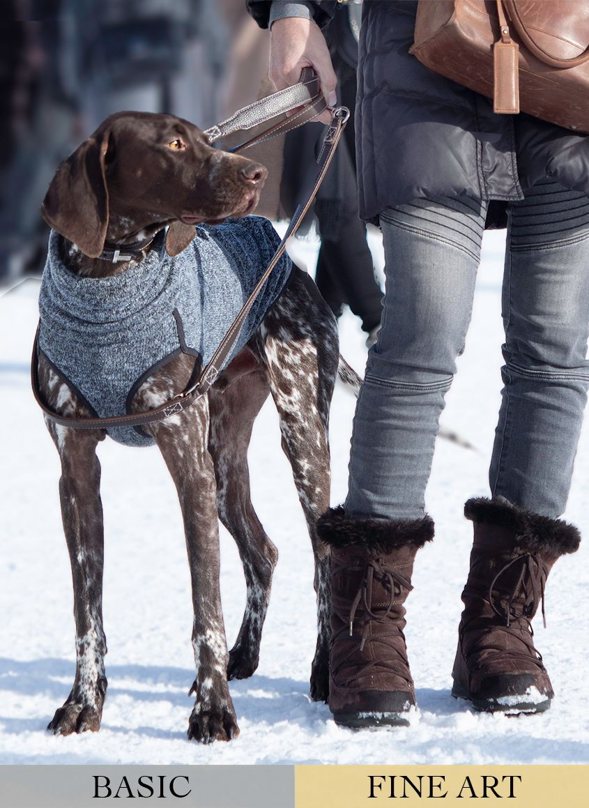 Brown and White Hound Dog and Owner Standing in the Snow by Zurich Photographer Leslie Argote