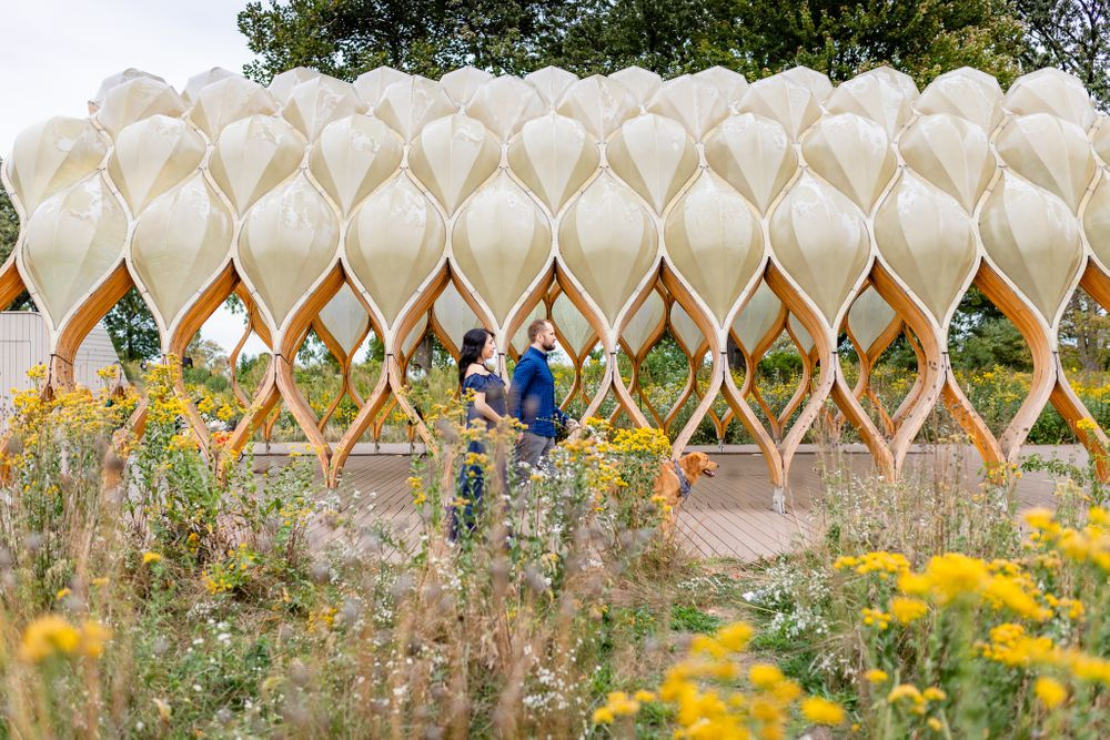 parents to be walking with dog by honeycomb installation Chicago family lifestyle session
