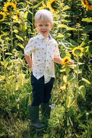 Zara Davis Photography Stroud Gloucestershire Cotswolds Family sunflowers boy in sunflowers