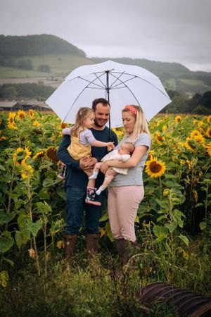Zara Davis Photography Stroud Gloucestershire Cotswolds Family sunflowers family under umbrella