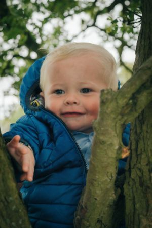 Zara Davis Photography Stroud Gloucestershire Cotswolds Family baby in tree