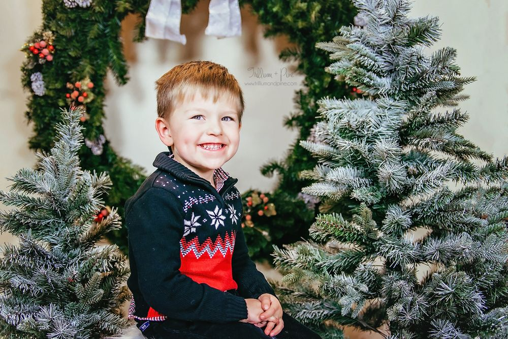 Christmas pictures near Petoskey Michigan