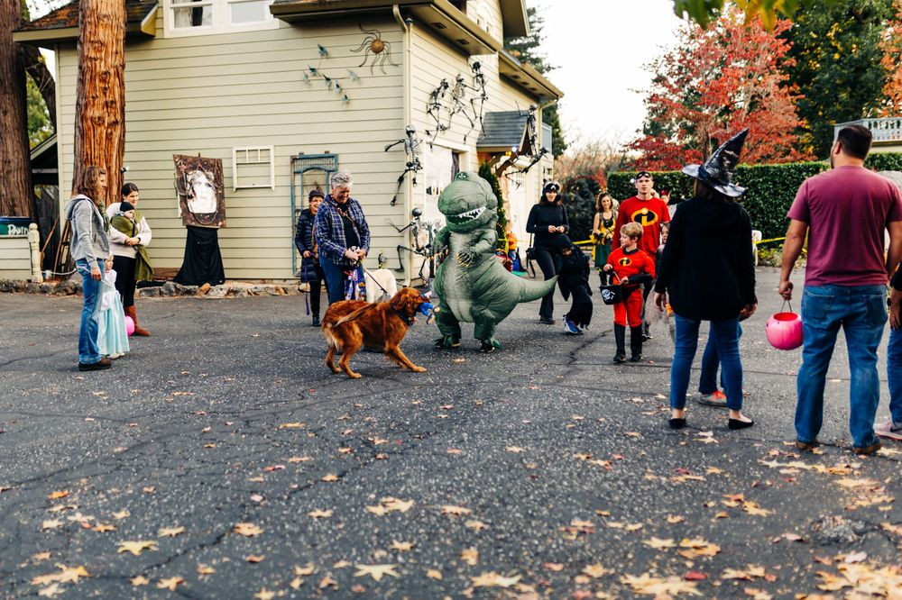 Halloween in Nevada City, California | Lenkaland Photography
