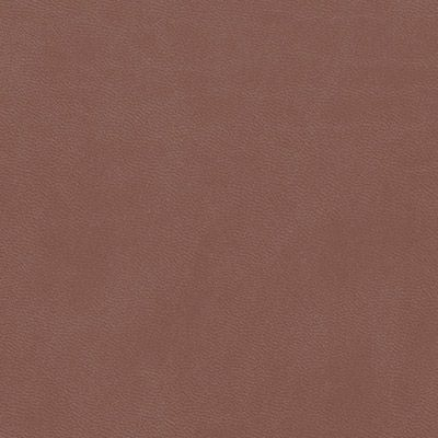 brown cloud leatherette colour swatch