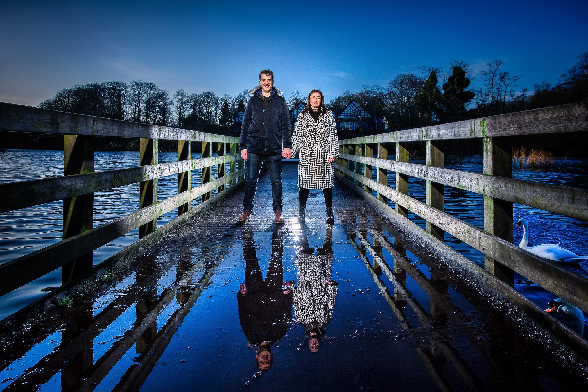 Egaged couple stand on a bridge over a lake reflected in a puddle and watched by swans in Worsely Manchester