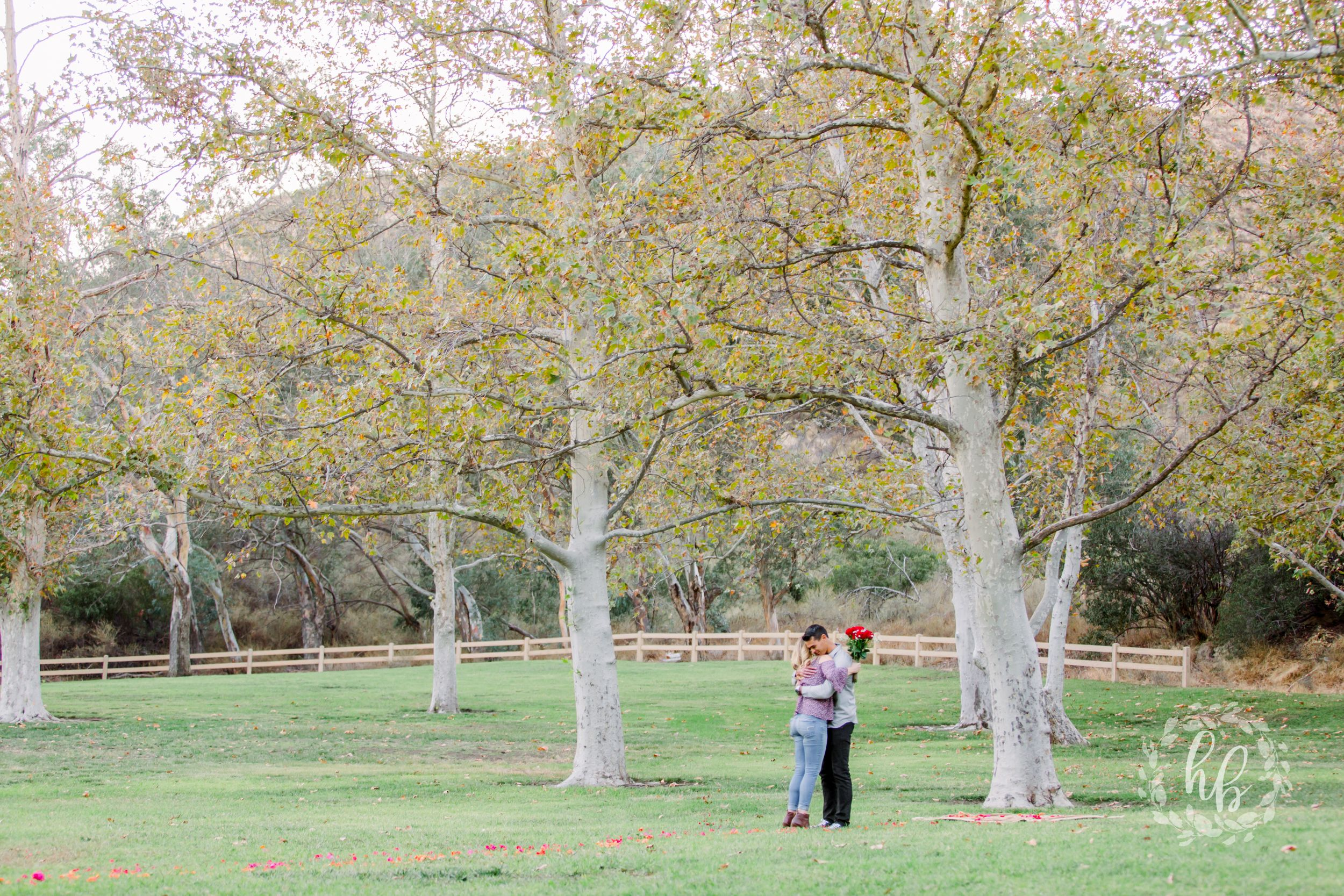 park proposal engagement photos