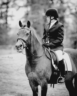 © Meg McGuire Photography, Georgia Equine Photographer