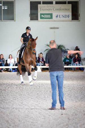 Emily Donaldson and Audi workign with Lars Petersen at the 2020 USDF Trainers Conference. Meg McGuire Equine Photography