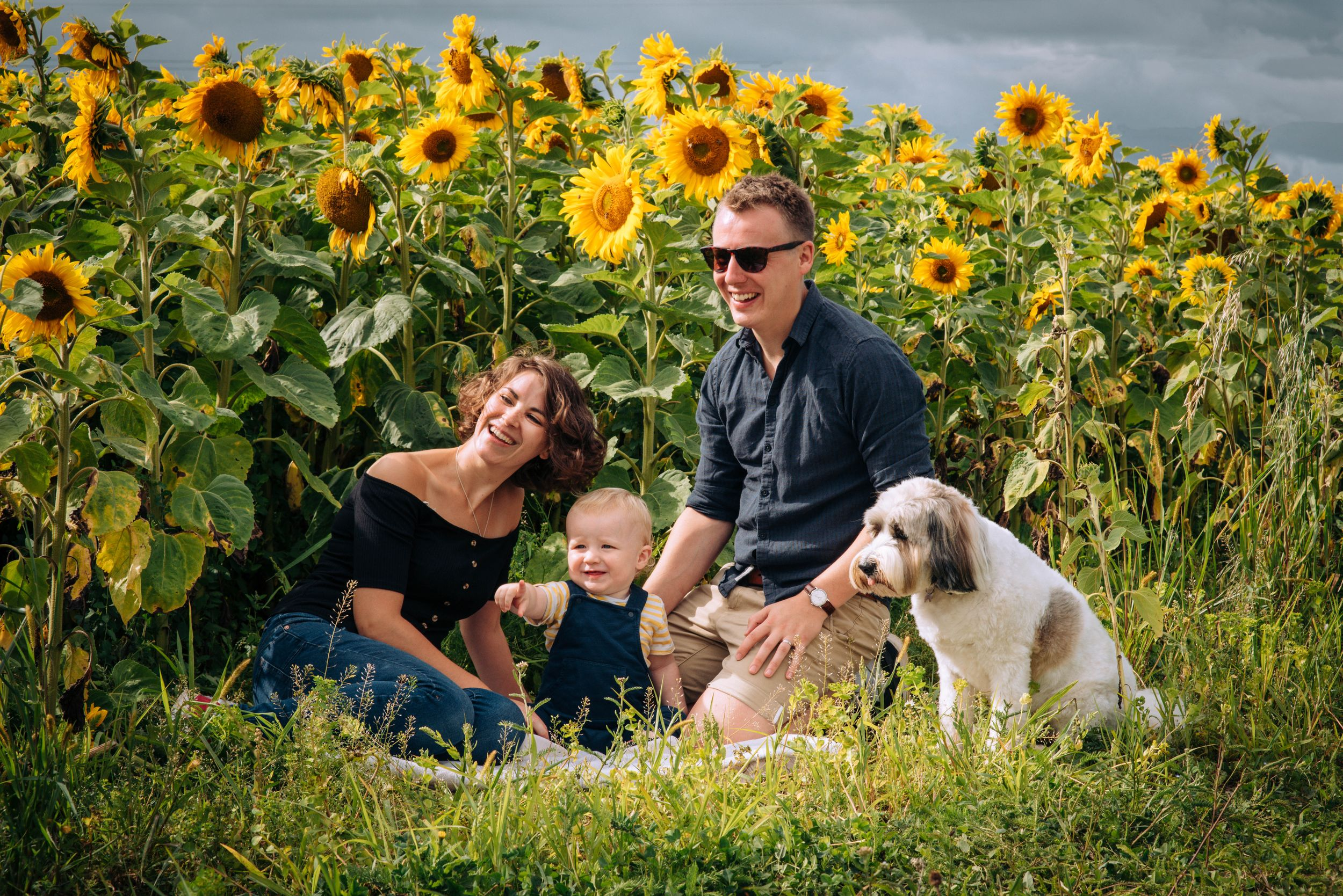 Zara Davis Photography Stroud Gloucestershire Cotswolds Pets family sunflowers