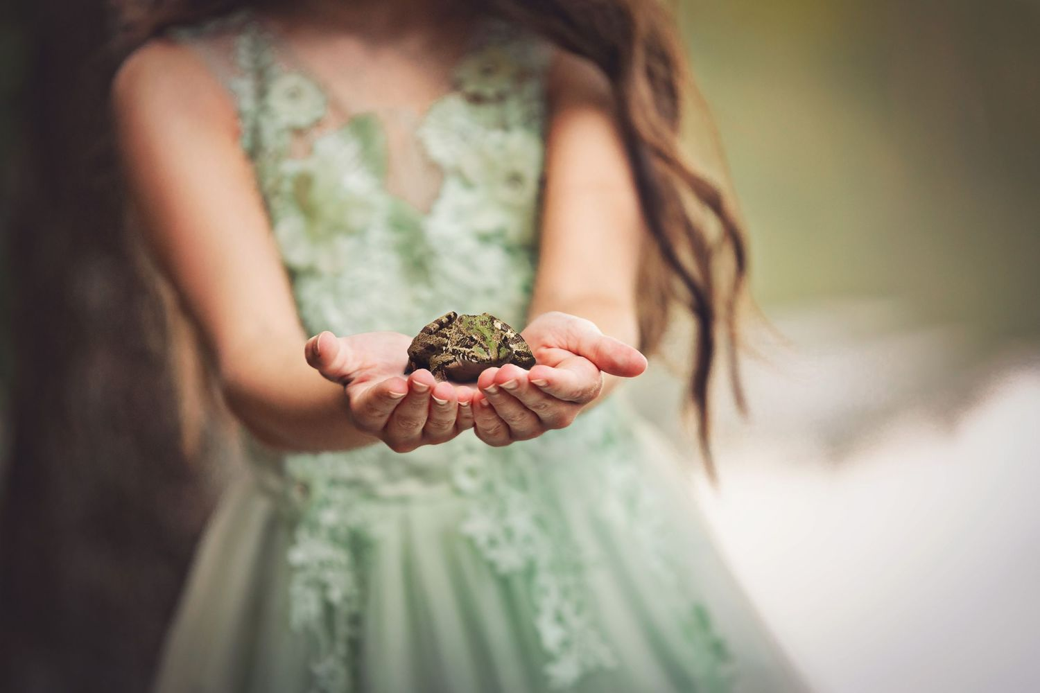 frog princess toad imagination photography mc