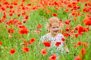 Photo of girl in poppy fields