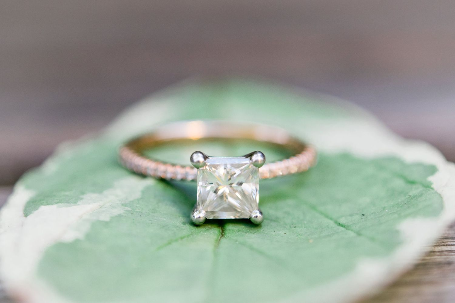 square engagement ring on a light green leaf