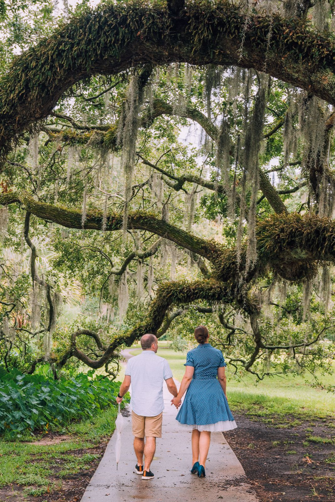 Newly engaged couple walking under huge oak tree