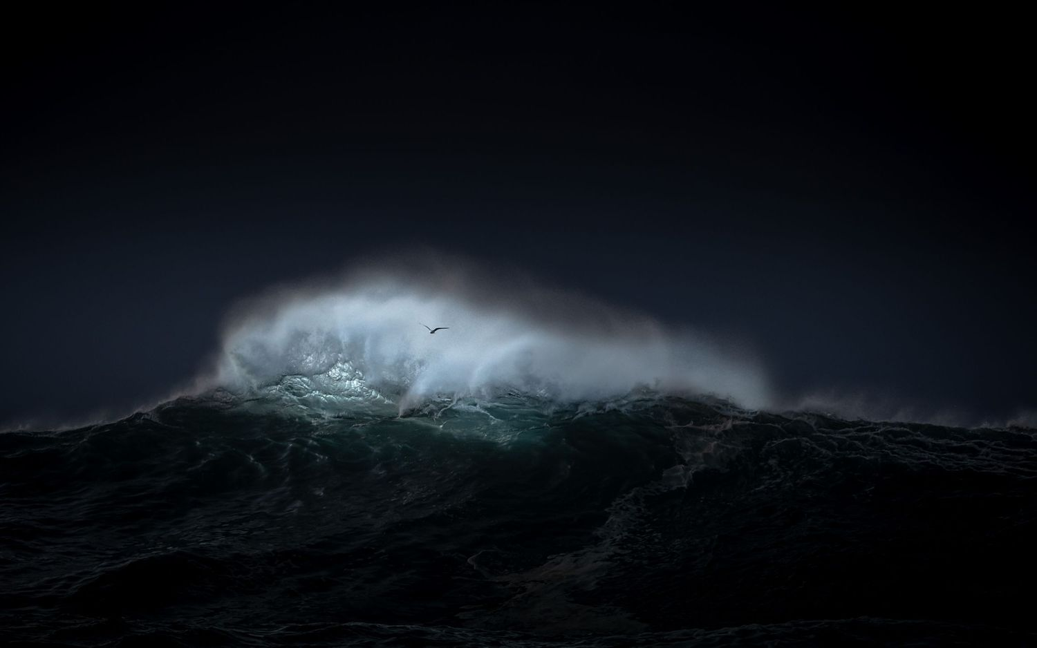 The New Wave series of photographs has been captured during huge swells along Australia's east coast.
