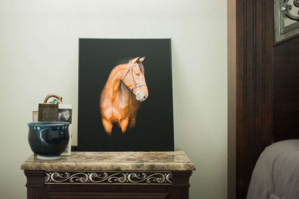 Canvas of brown horse on black background. Canvas is on a side table next to decorative items