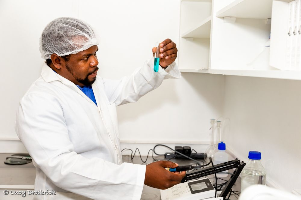 A lab technition carries out a scientific test
