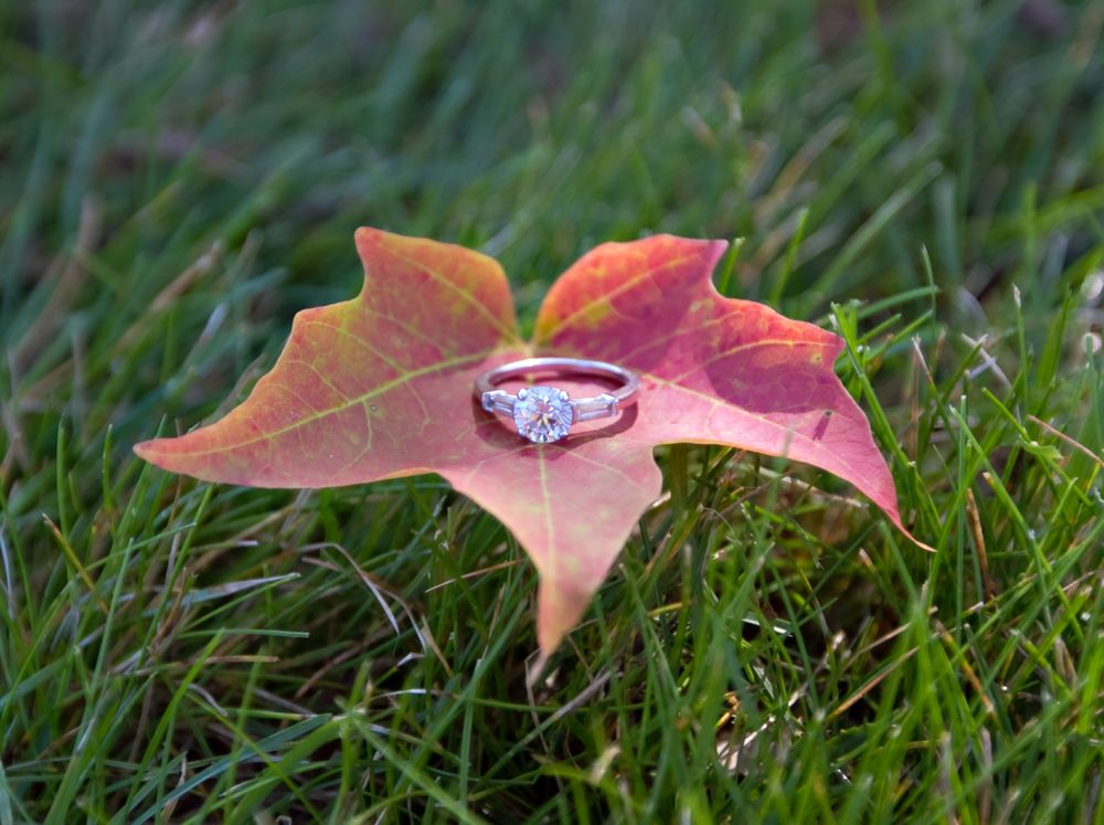 Fall engagement, rings