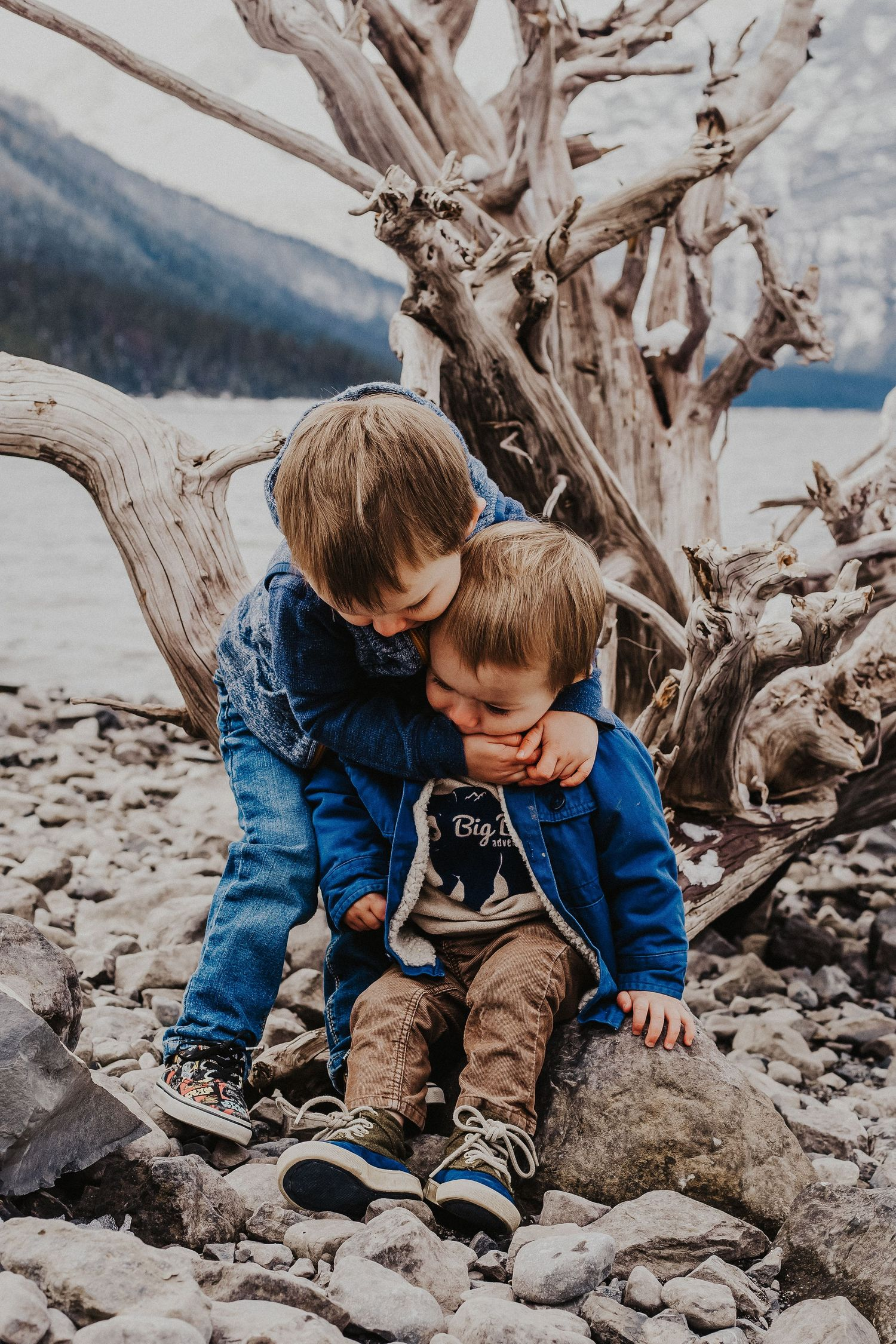 big brother hugs little brother in front of driftwood