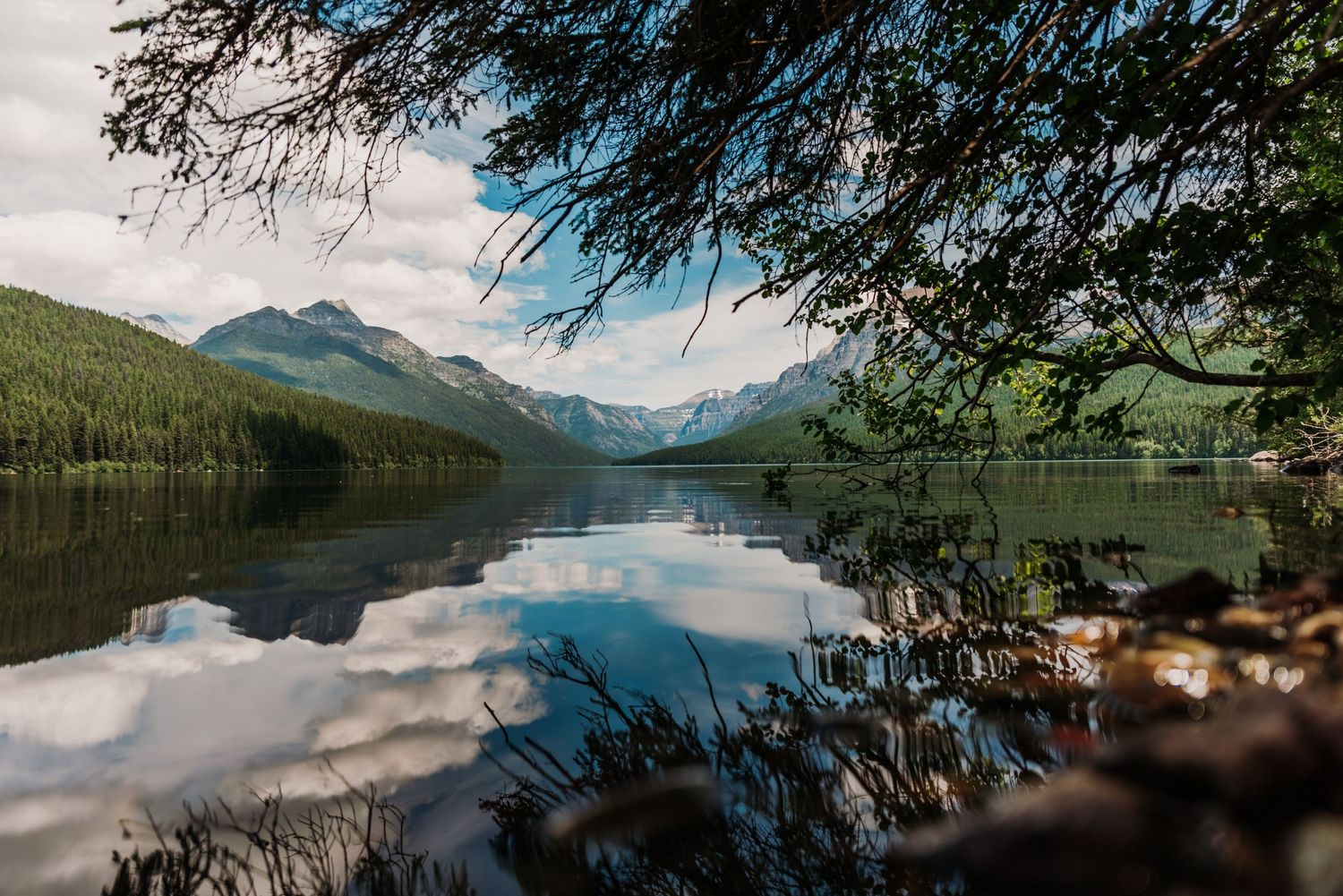 mid day photo of bowman lake in glacier national park