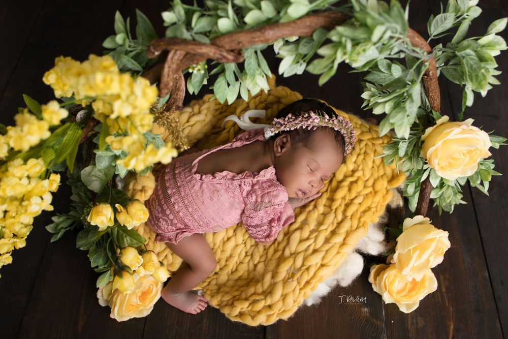 jaiden photogrpahy jacksonville fl newborn best photographer