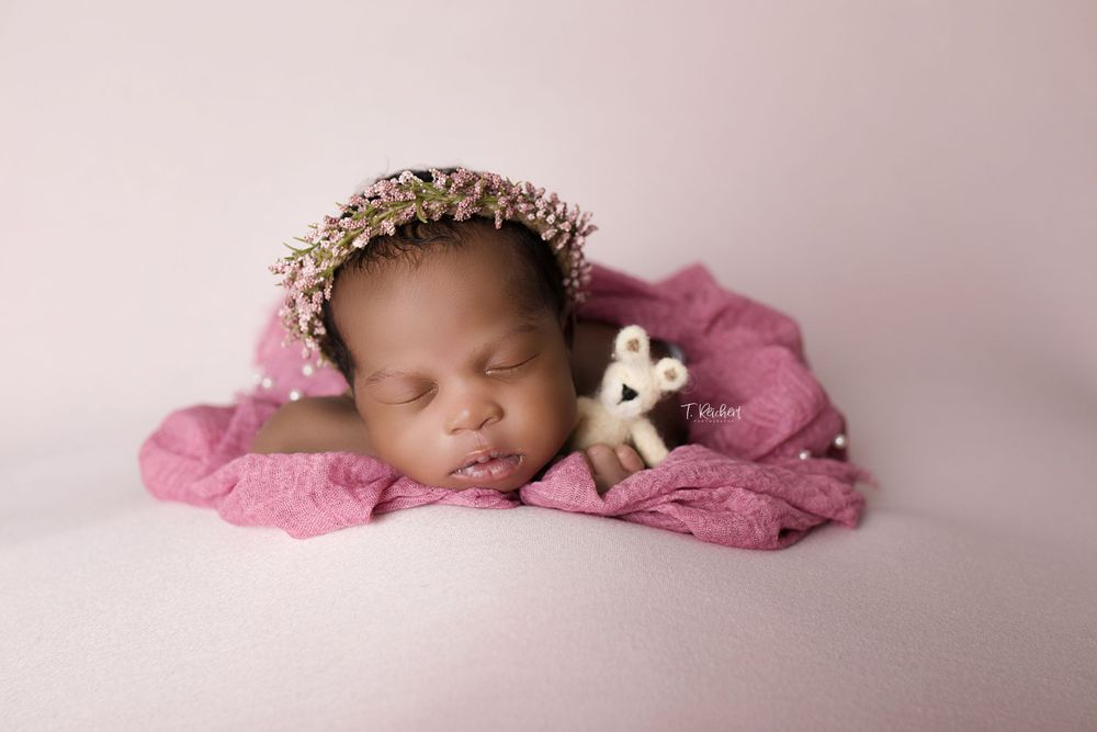 808 photography jacksonville fl newborn best photographer