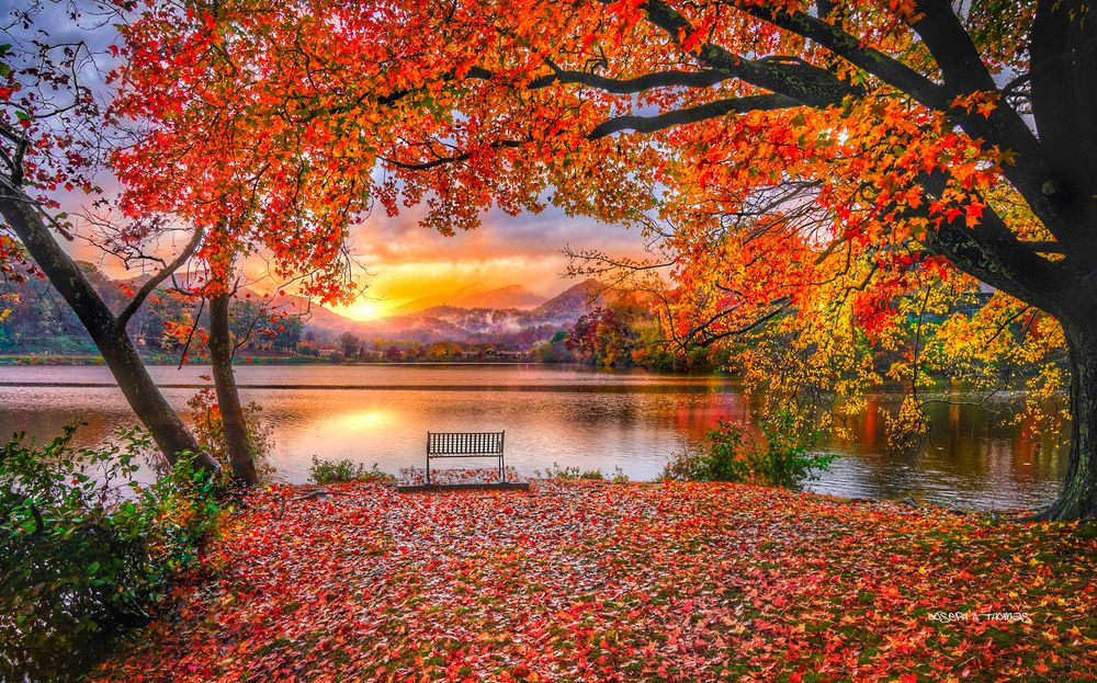 CarolinaPhotoArt.com- Up to 50% Off Gallery Prints - Lake Junaluska, NC. - Bench of Solitude in Fall