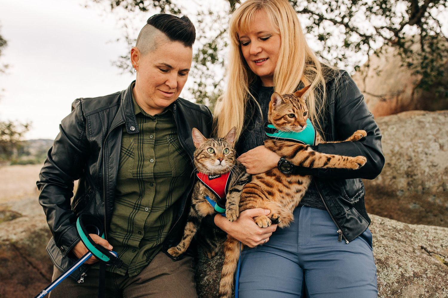 An LQBTQ couple struggles to hold two cats during their family photo shoot in San Diego.