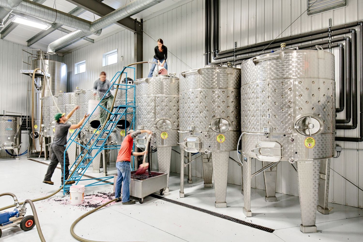 filling tanks with grapes