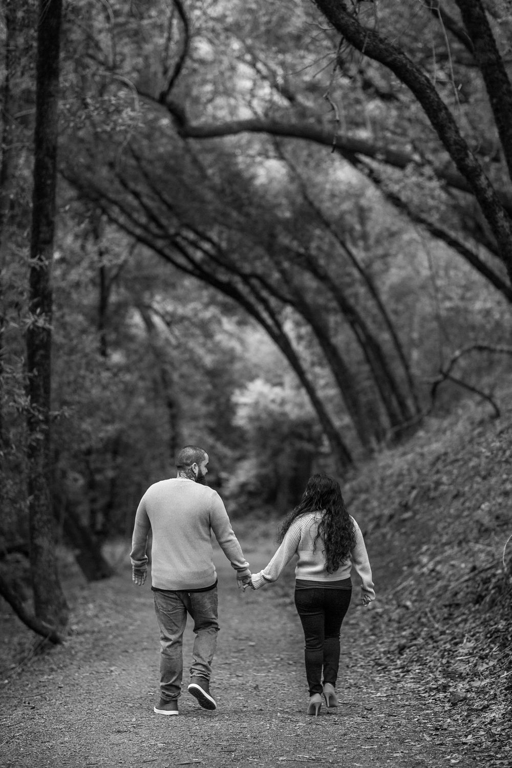 rebecca skidgel photographer engagement session at north sonoma mountain couple in forest holding hands laughing walking