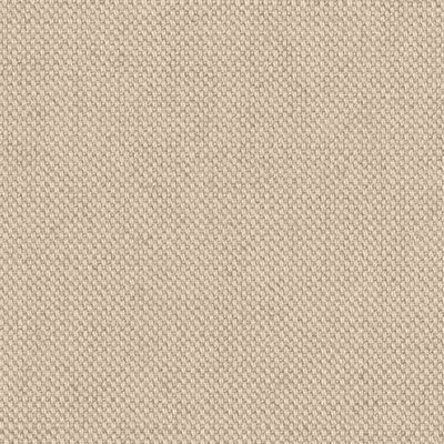 Cream Cotton Fabric Colour Swatch