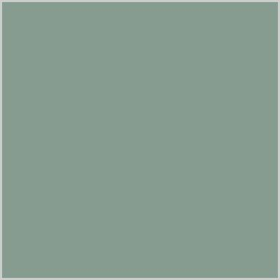 sage green eco leather album colour swatch