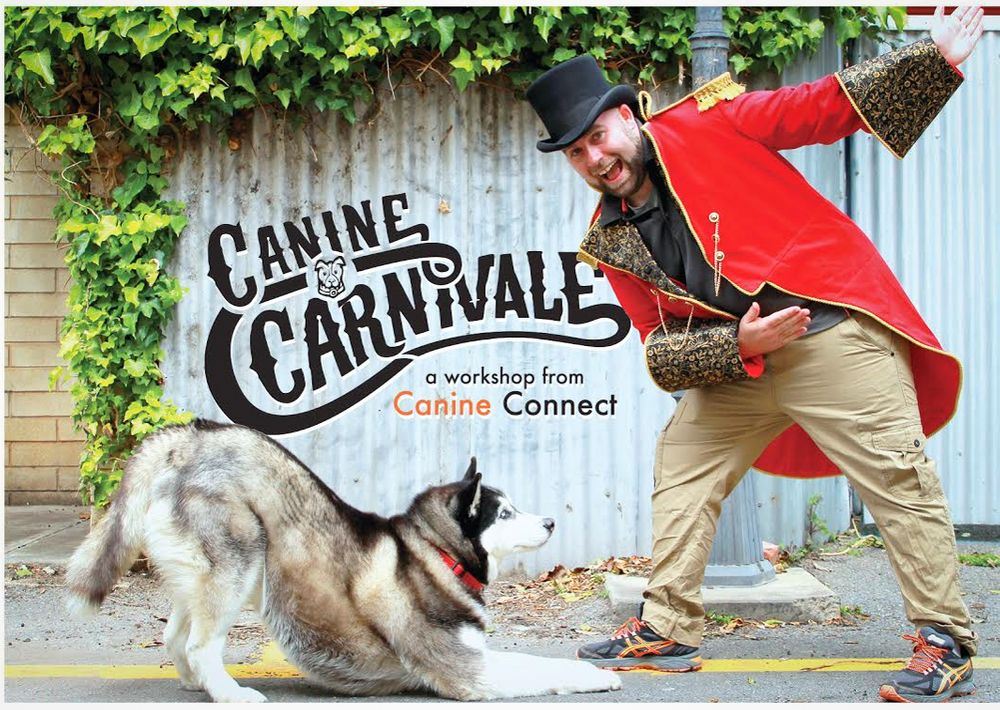 Canine Carnival Workshop Photographer in Adelaide