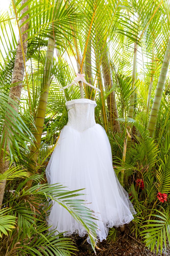 wedding dress in the palms