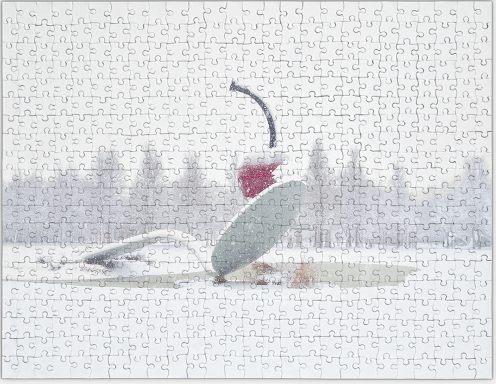 Spoon and Cherry in Winter by Lisa Drew photo artist as a challenging photo puzzle