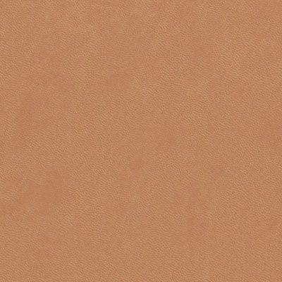 hazel cloud leatherette colour swatch