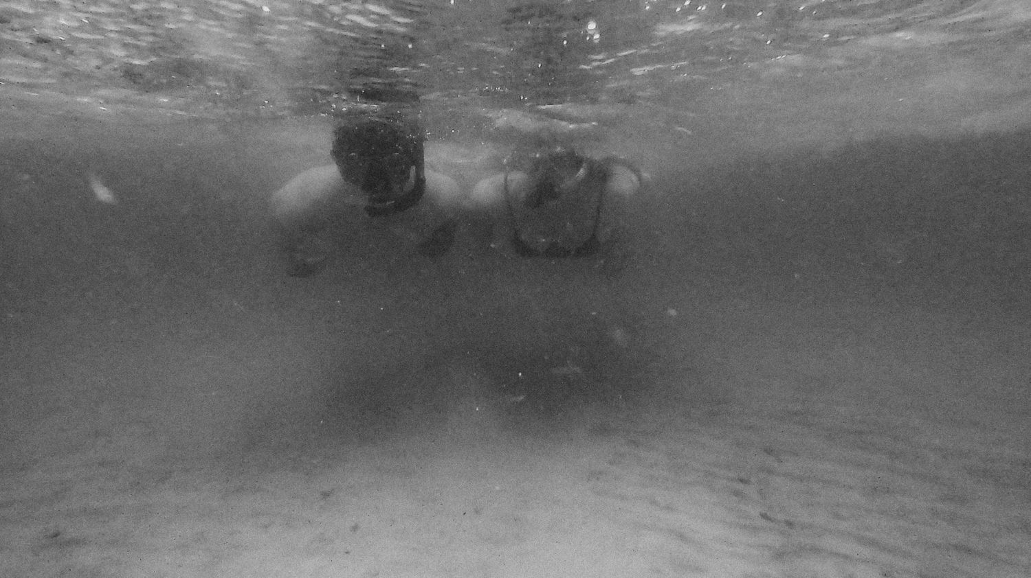 underwater shot of a couple snorkeling