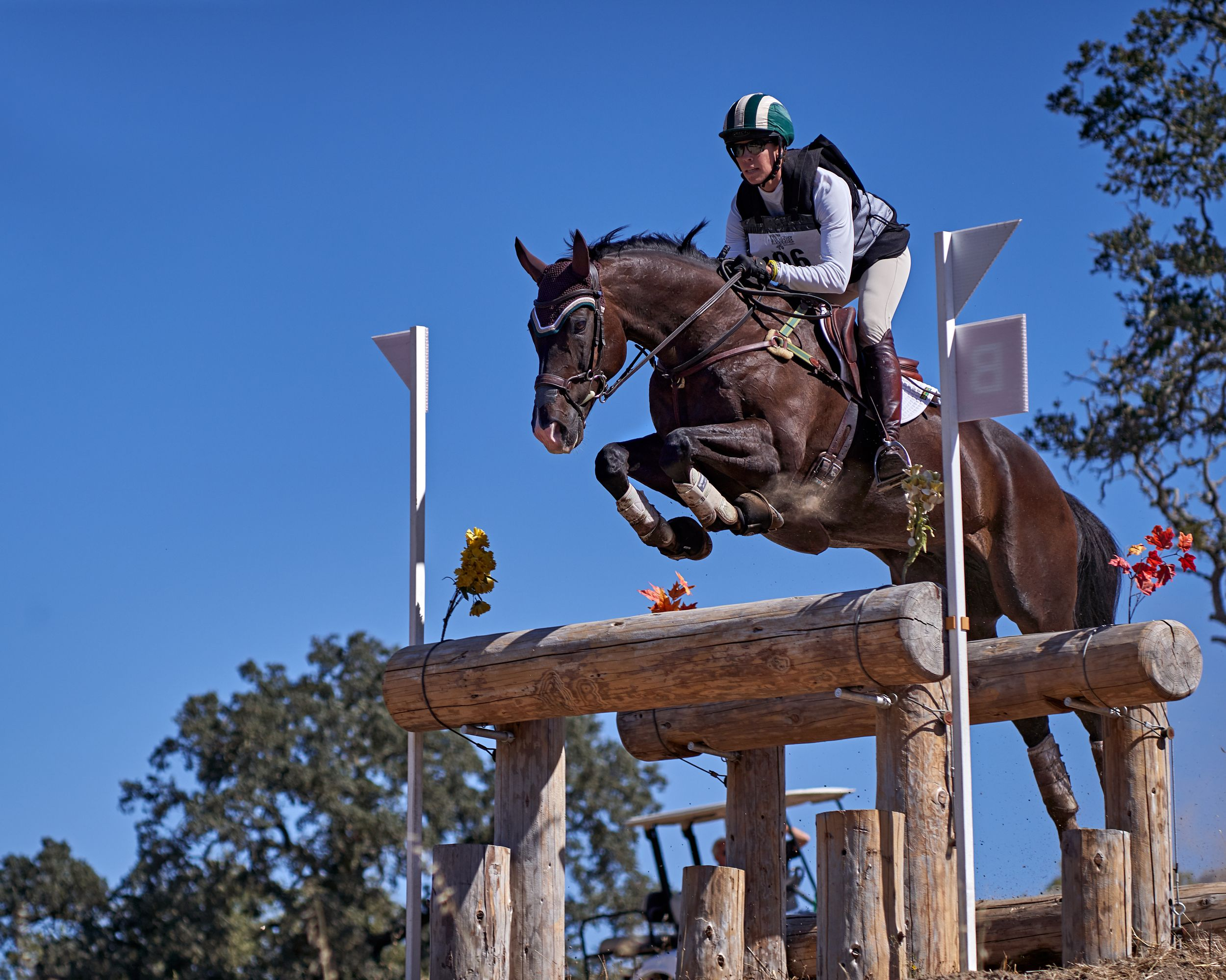 Cross Country Jumping at the Horse Park at Woodside