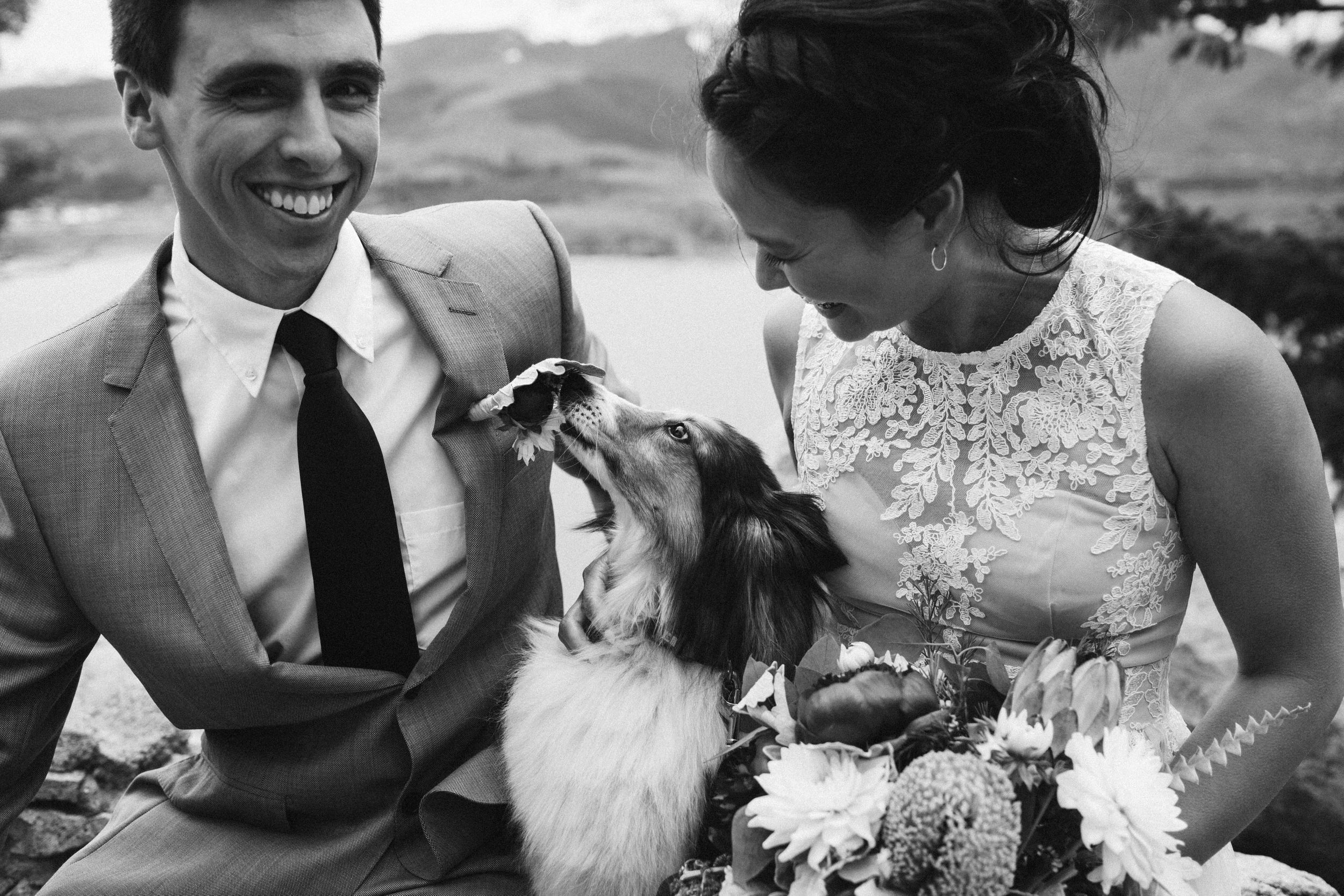 Laughing and emotion with dog black and white Mountain Ceremony Colorado Wedding Photography