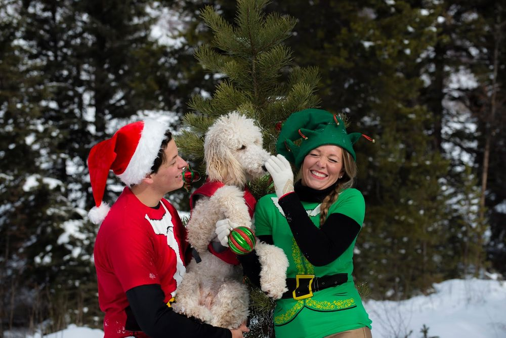 A couple in Christmas costumes with white poodle