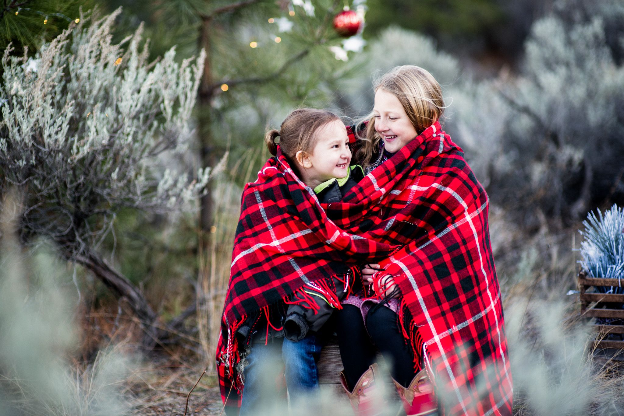 Christmas Mini Sessions | Kamloops BC