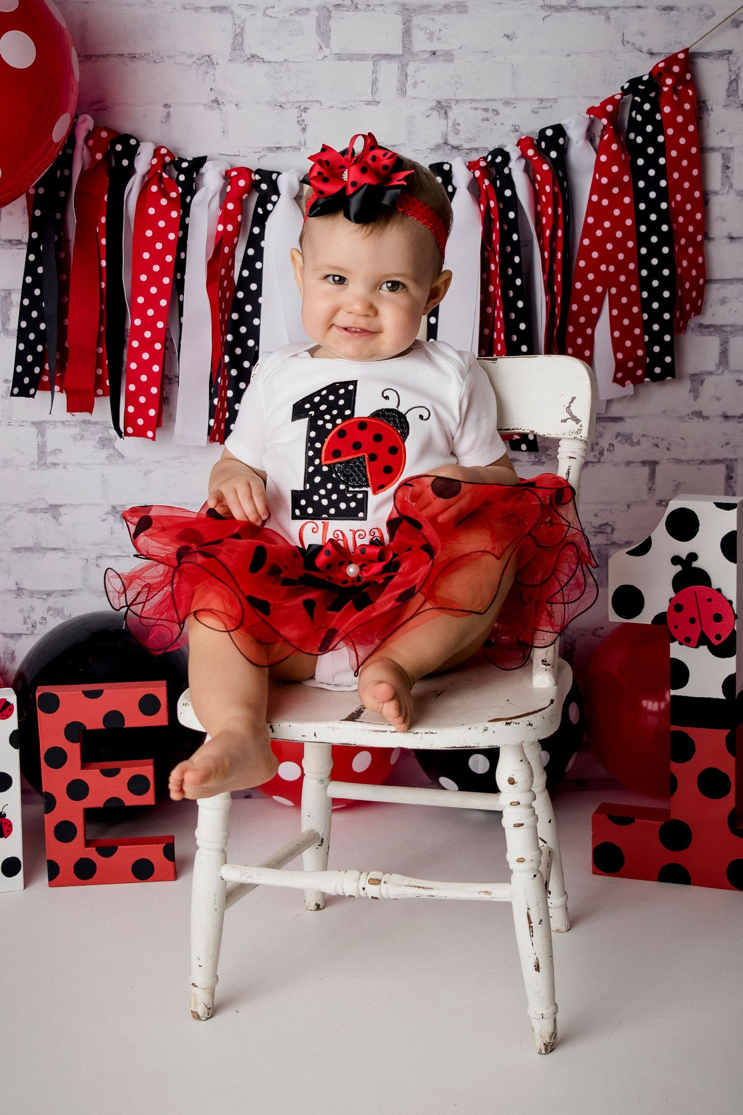 one year old girl ladybug theme
