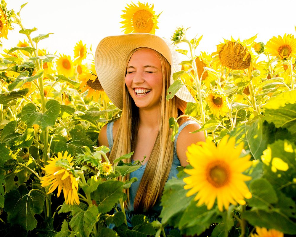 Sunflower field senior pictures in Valley & Omaha, NE