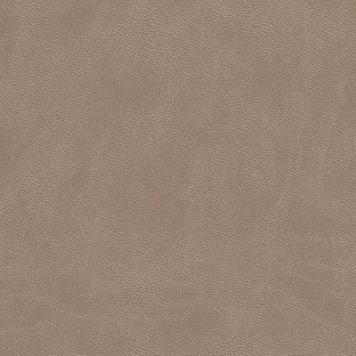 light mocha cloud leatherette colour swatch