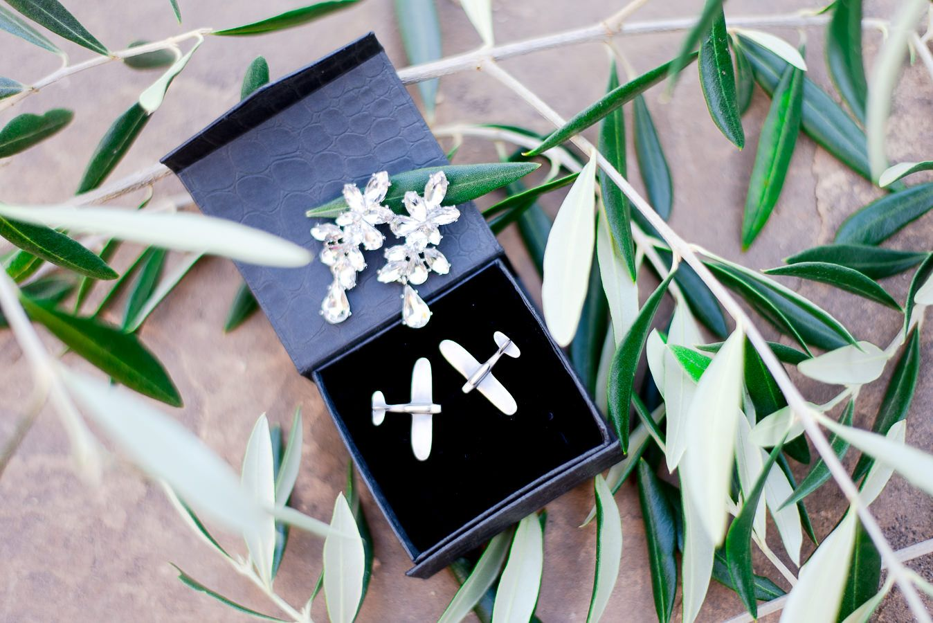 wedding earrings and airplane cufflinks sitting in olive leaves for NorCal wedding in the fall
