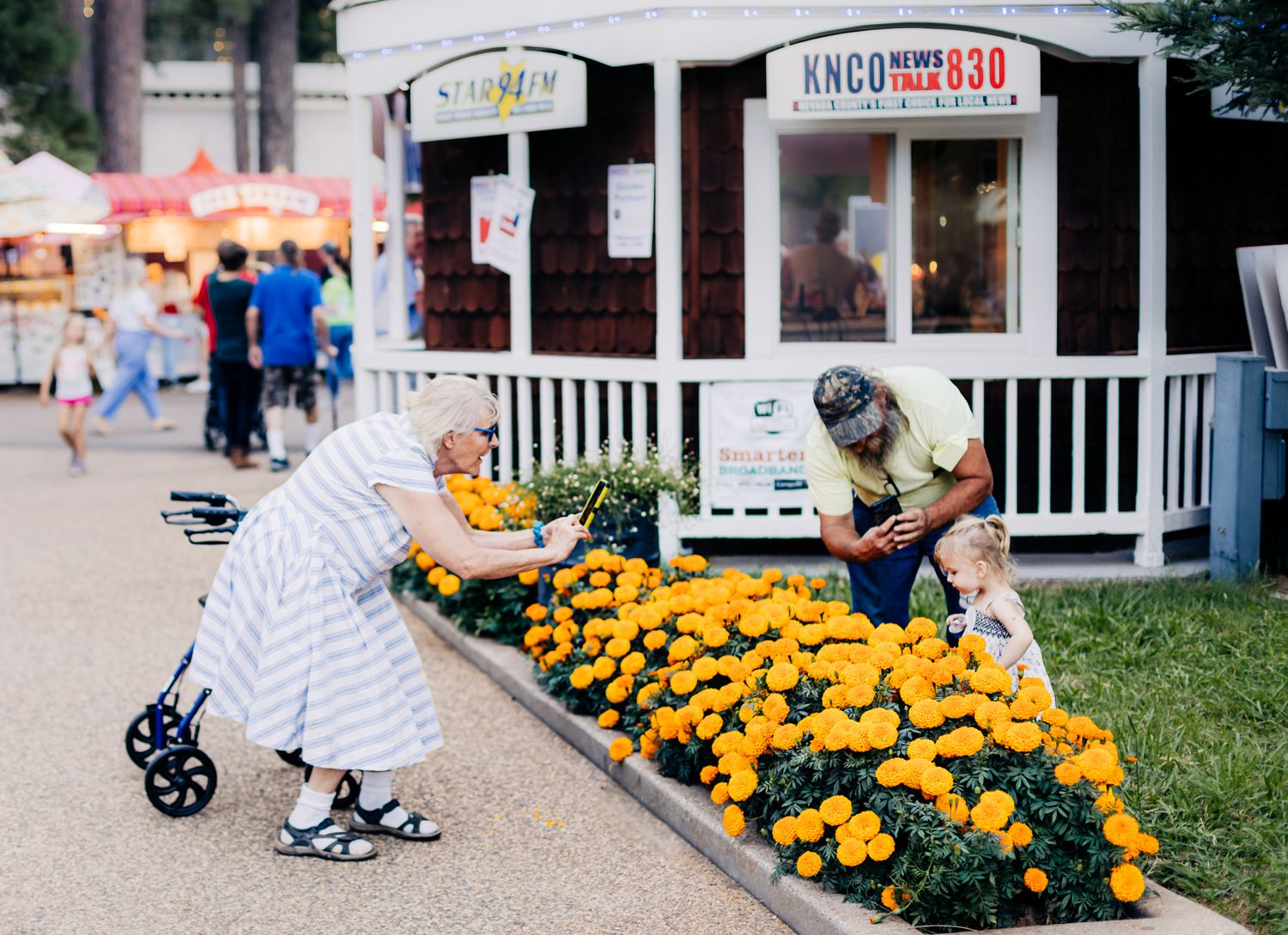 A grandparent takes a photo of a toddler over a flowerbed of marigolds at the Nevada County Fair | Lenkaland Photography