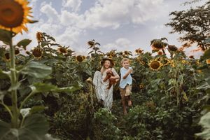 brother and sister, mini golden doodle, sunflower field
