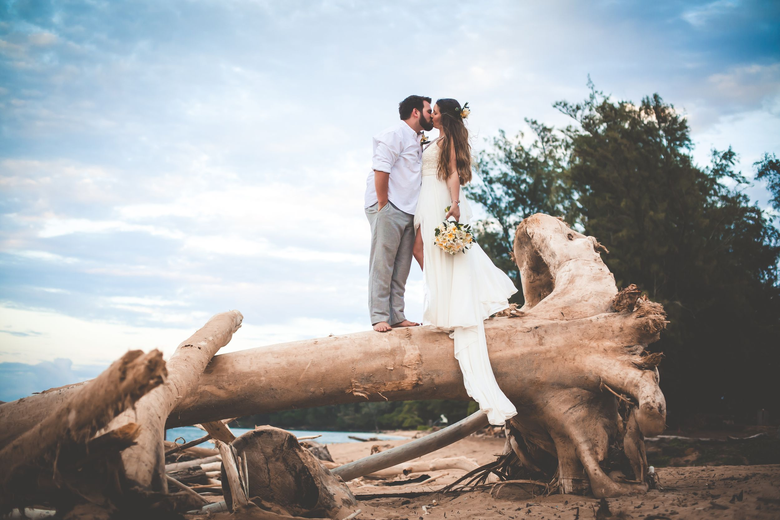 Photo of a bride and groom standing on a large fallen tree on the beach and kissing each other.