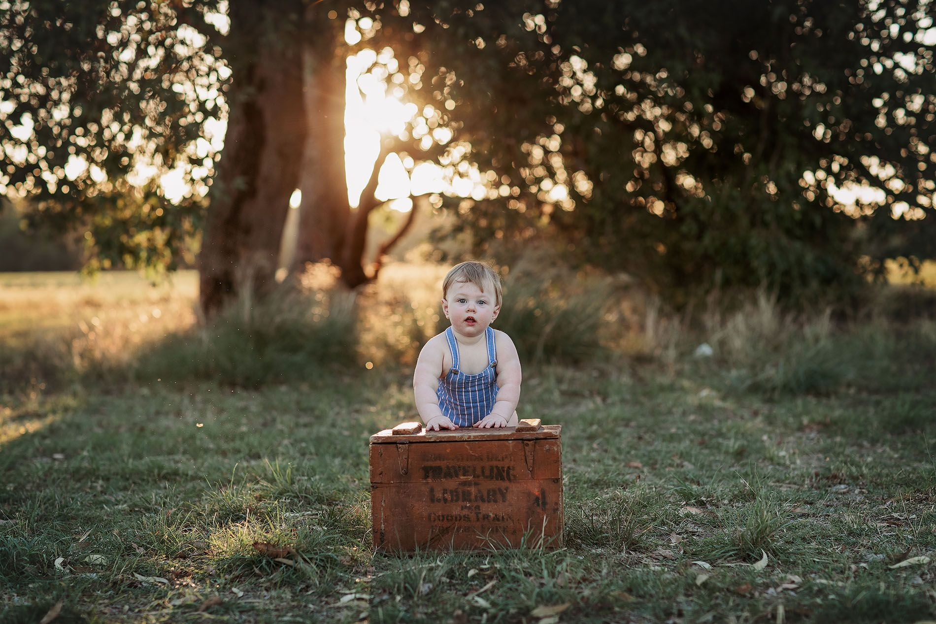 Little Brown Rabbit Photography - Baby photographer in Perth - one year old in a  field with wooden box