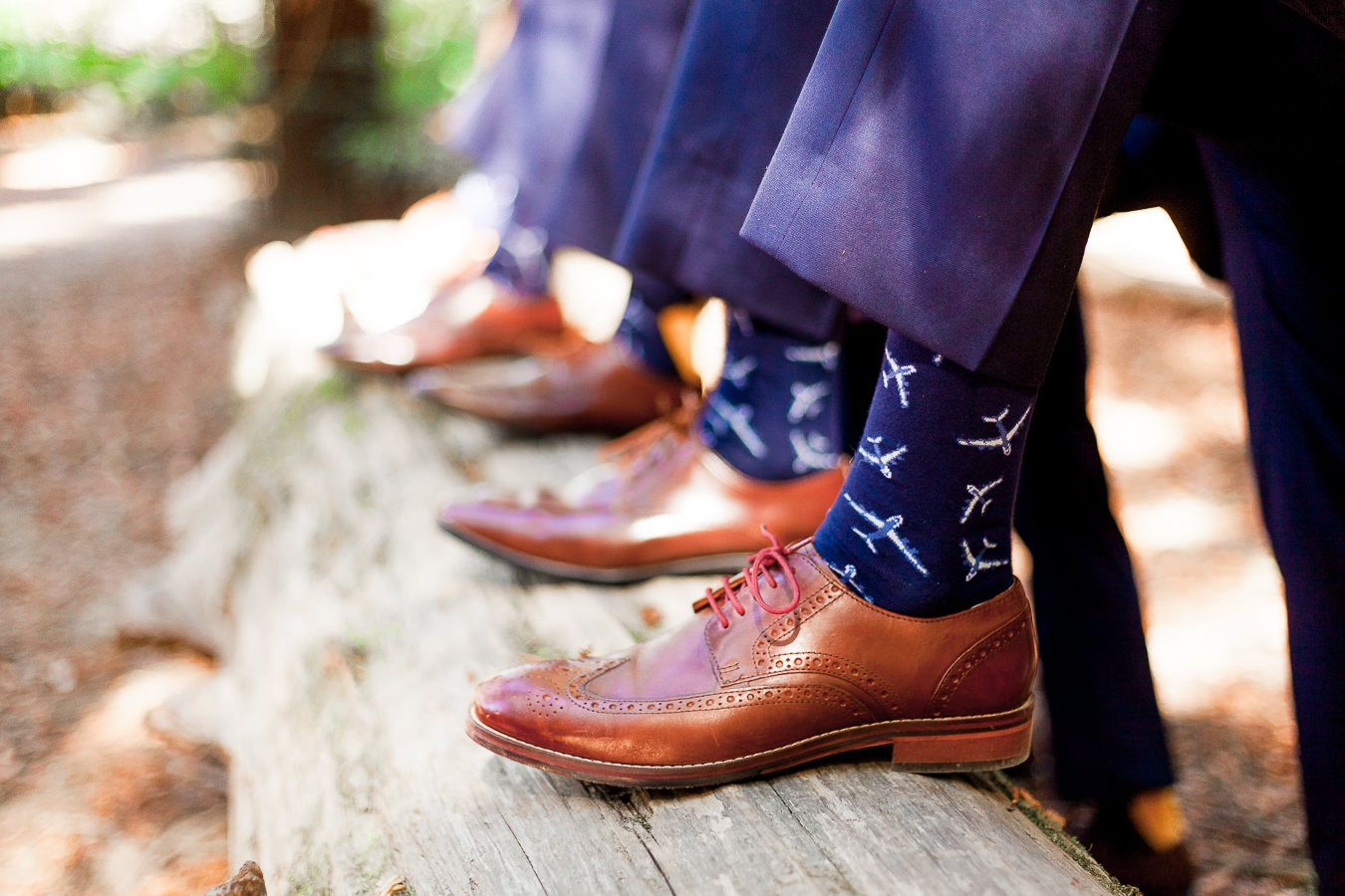 navy socks with airplanes and brown shoes on fallen redwood tree
